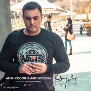 اهنگ پیشم بمون با صدای امیرحسین شریفی حسینی